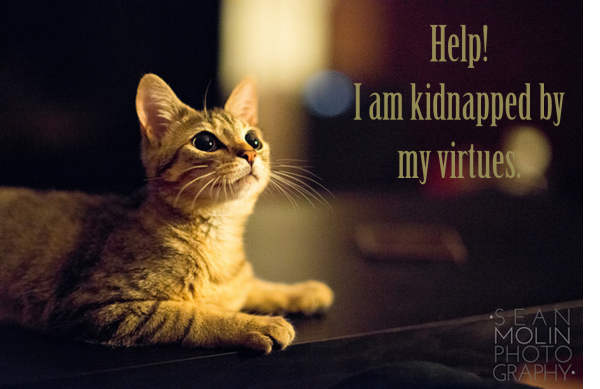 Help! I Am Kidnapped By My Virtues